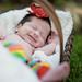 Baby Elli
