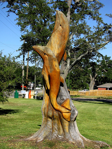 Dolphins tree carving by marlin miller a man who out of h