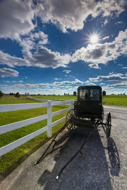 Amish Country Buggy Tours