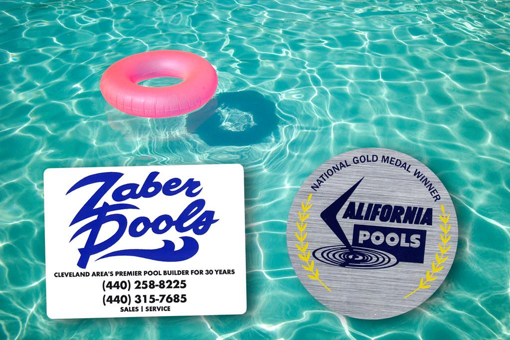 Can Pool Algae Infect A Dog S Ear