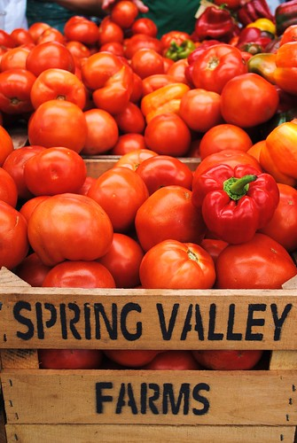 Spring Valley Farms | by ekelly80