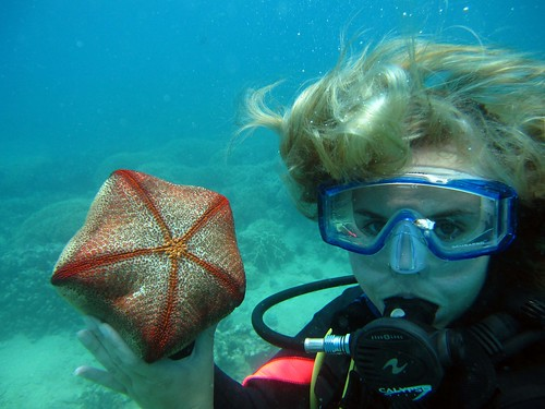 Nha Trang - Diving Hon Mun - Ash Holding Rock Starfish | by FollowOurFootsteps