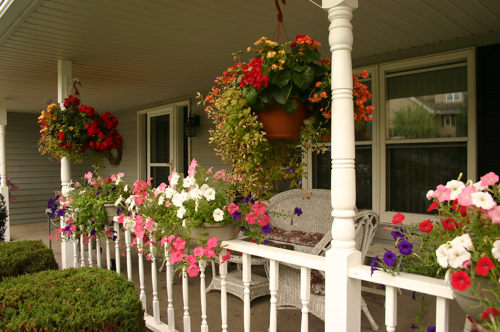 some plants to consider when decorating the front porch grand homes. Black Bedroom Furniture Sets. Home Design Ideas