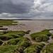 Solway Firth looking N W