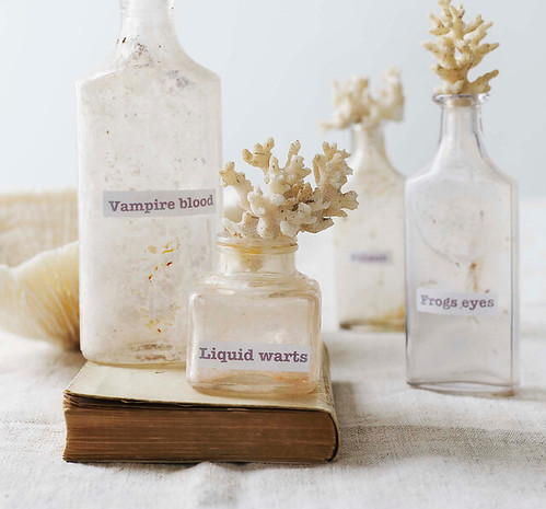 sweet paul magazine fall 2010 spooky old bottles with coral as corks | by ...love Maegan