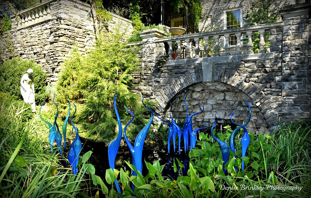 Chihuly At Cheekwood Botanical Gardens In Nashville Tenne Flickr