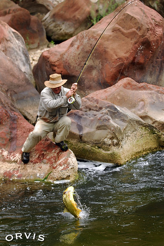 orvis fly fishing contest dorau is my life garcia