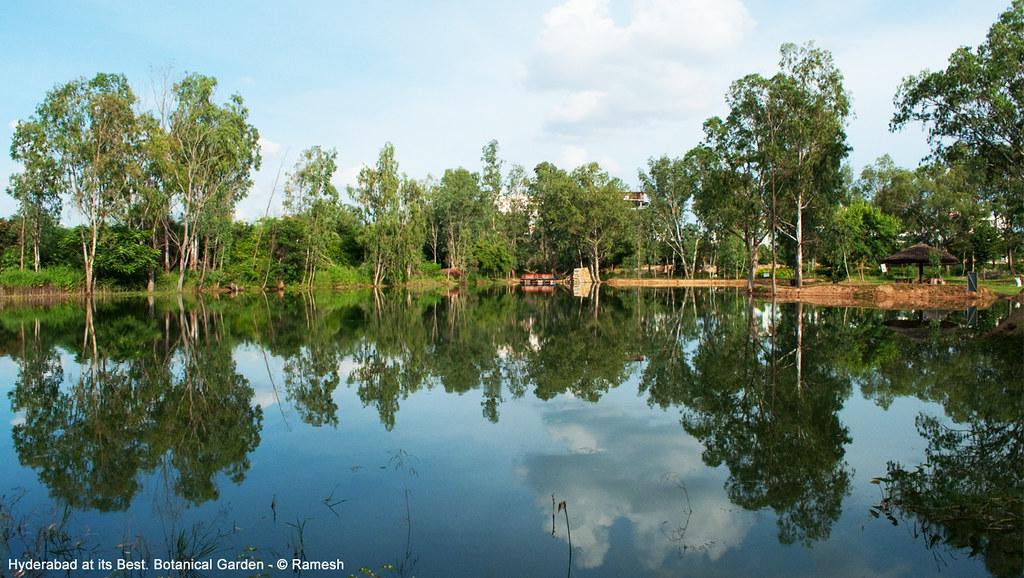 Lake Symmetry Landscape at Hyderabad Botanical Gardens. | Flickr