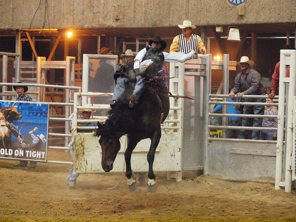 amateur rodeo association and texas