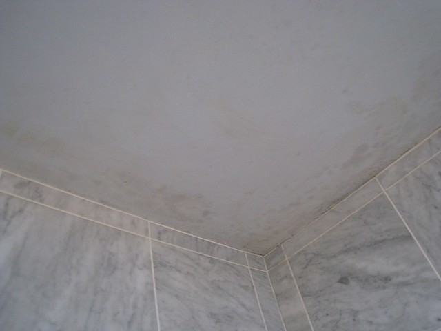 Stains On Bathroom Ceiling From Water Damage We Will Repaint Flickr Photo Sharing