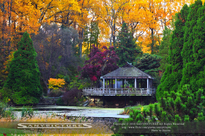 ... The Colors Of Autumn   Brookside Gardens Maryland | By SP™