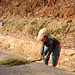 Girl Preparing Grasses for Broom-Making