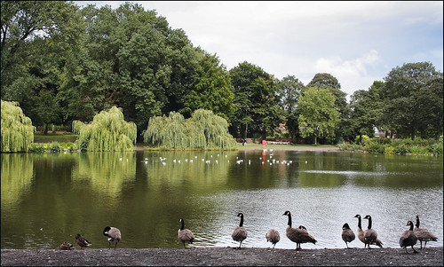 Handsworth Park Walk 8/10 (fv15) | by Ted and Jen