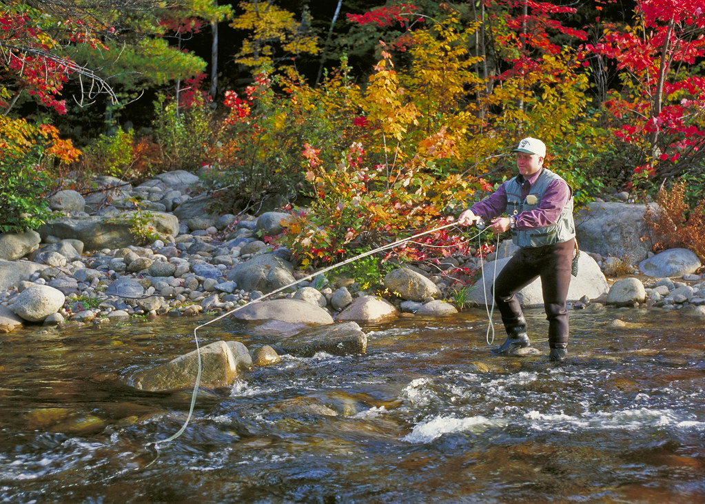 94cs3005 a fly fishing angler in a stream in the white for White mountain fishing report