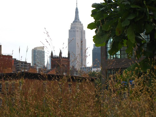 The Empire State Building from the High Line | by ishmatt