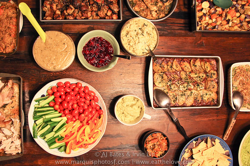 Thanksgiving2010-66 | by HipGayChemistryTeacher