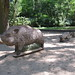 Wildschwein Familie