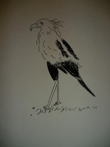 sekretär vogel tansania ~ sekretärvogel  tuschezeichnung dina3  bina 2010  flickr
