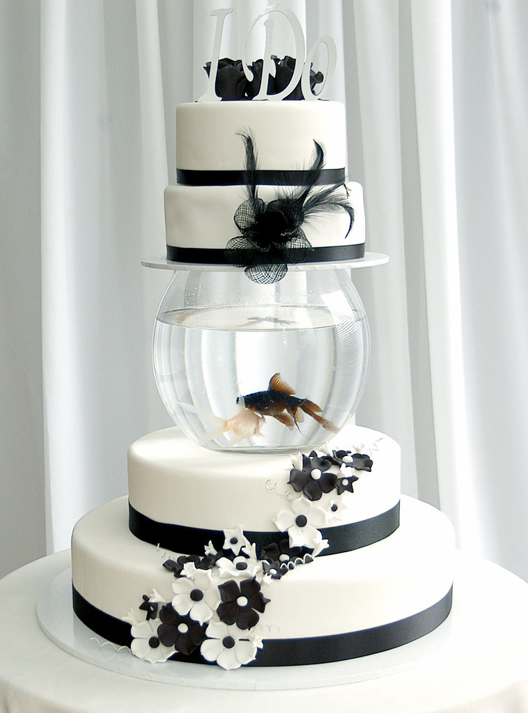 Amp white fish tank wedding cake this is a cake i made flickr