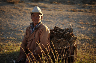 Mongolian Dung Collector | by goingslowly