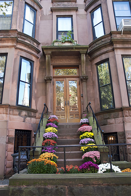 Chrysanthemums on a park slope brownstone home brooklyn for Townhouses for sale in nyc