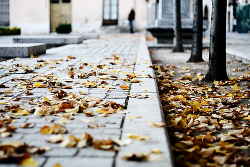 autumn came too fast | by Andreea Ilin