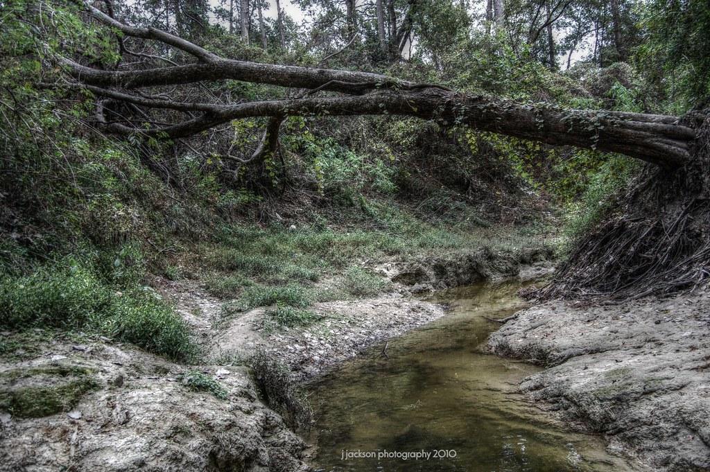Cypress Creek Spring Tx Luminance Hdr 2 0 0 Tonemapping
