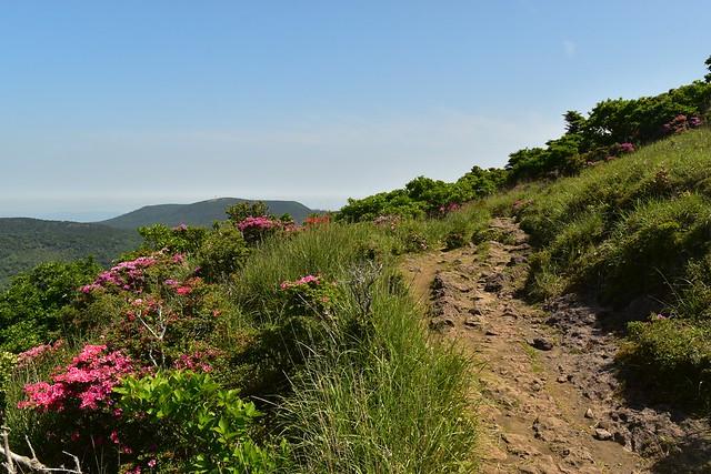 韓国岳(大浪池コース) 日帰り登山