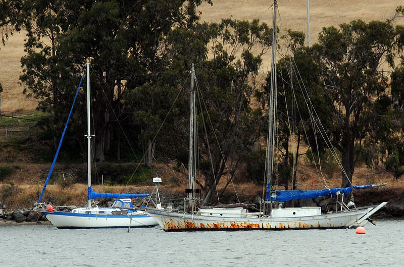Fishing boats on tomales bay momboleum flickr for Tomales bay fishing report