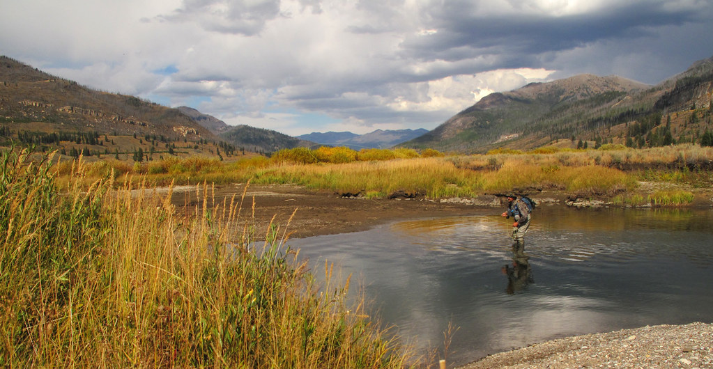 Slough creek yellowstone national park fly fishing on for Yellowstone park fishing report