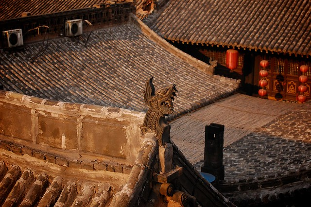 Roof Love