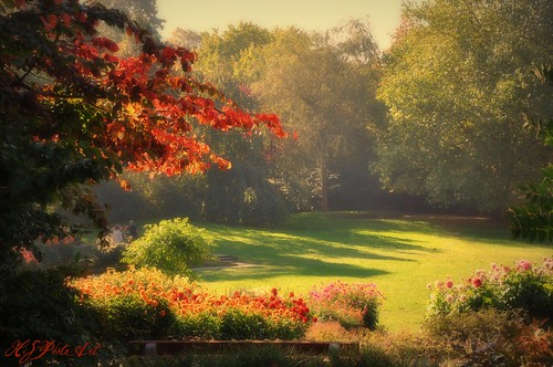AUTUMN DAYS ARE HERE AGAIN 1 | by HiS***PhotoArt