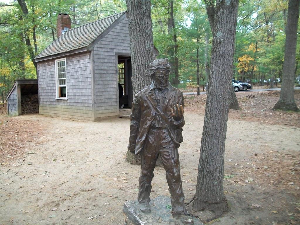 Thoreau kept detailed records of phenophases.