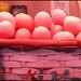 la cesta de los huevos