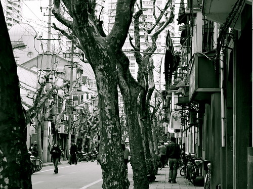 French Concession on Sunday | by moi moi nz