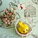 Lemon Poppy Seed Canary Cupcakes
