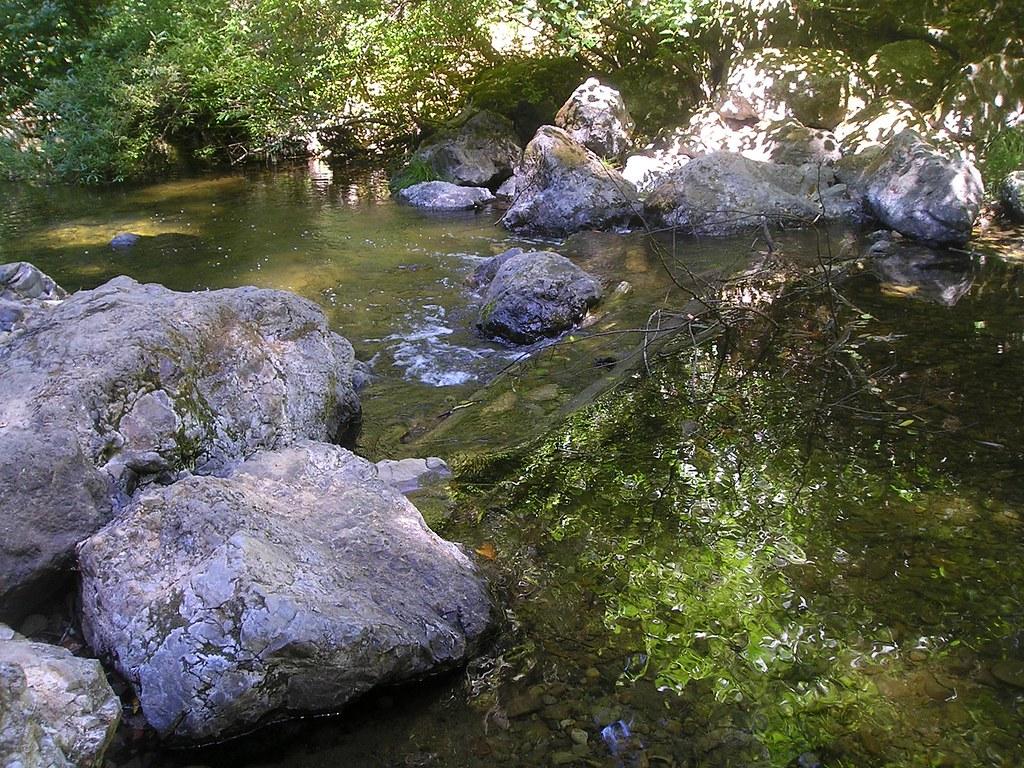 California san mateo county pescadero -  Pescadero Creek At Memorial County Park San Mateo County California By Roman Eye