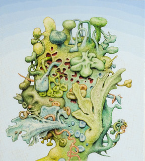 03 Alexander Ross, Untitled, watercolor, colored pencil and graphite on paper, 2008 | by 50 Watts