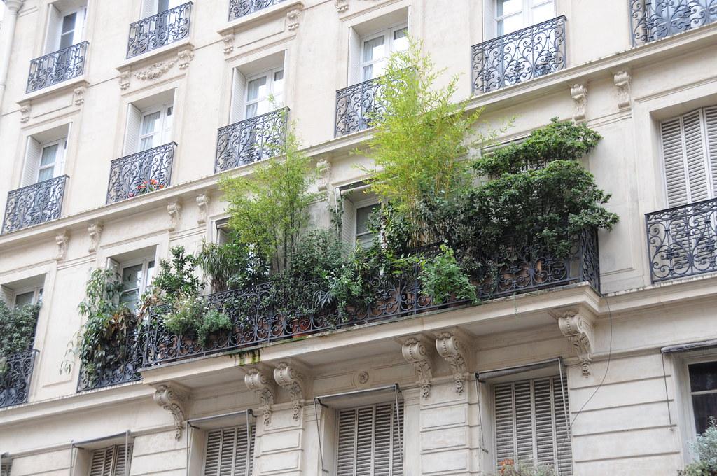 paris balcony garden neil tuller flickr. Black Bedroom Furniture Sets. Home Design Ideas