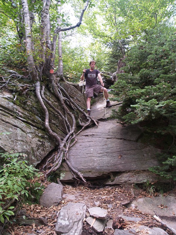 Climbing back down a steep section of the Devil's Path toward Jimmy Dolan Notch