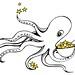 Star Octopus