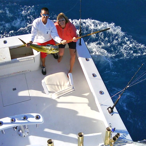 Dolphin mahi dorado outcast deep sea sport fishing ch for Hollywood florida fishing charters