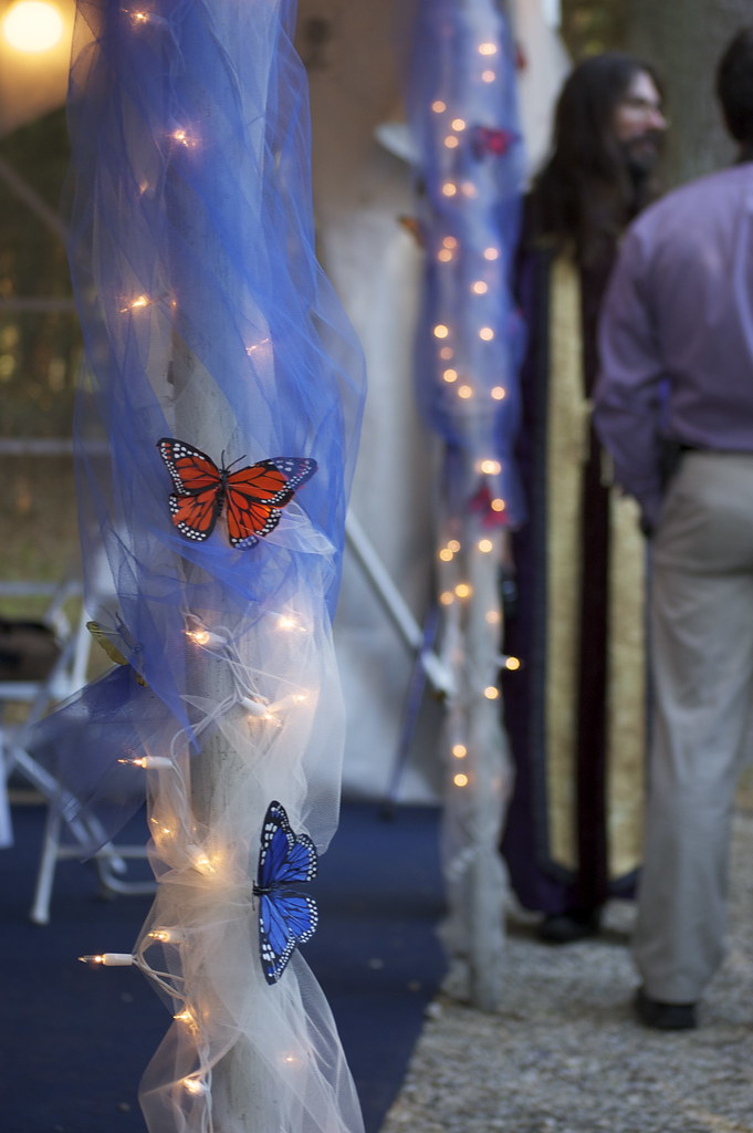 Matt katherine 39 s wedding butterfly decorations flickr for Butterfly wedding