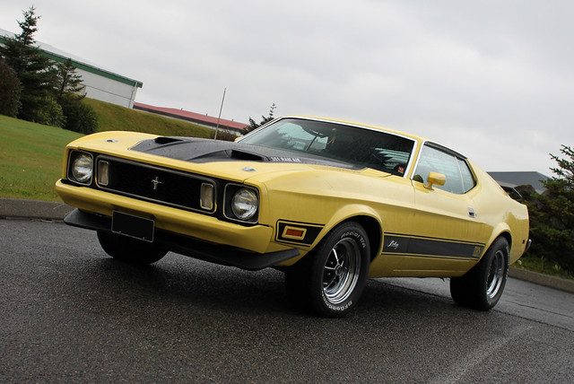 ford mustang mach 1 351 180 73 flickr photo