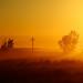 Misty Sunny Morning Landscape