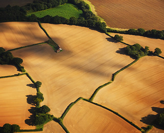 Sussex Fields | by Christopher Hope-Fitch