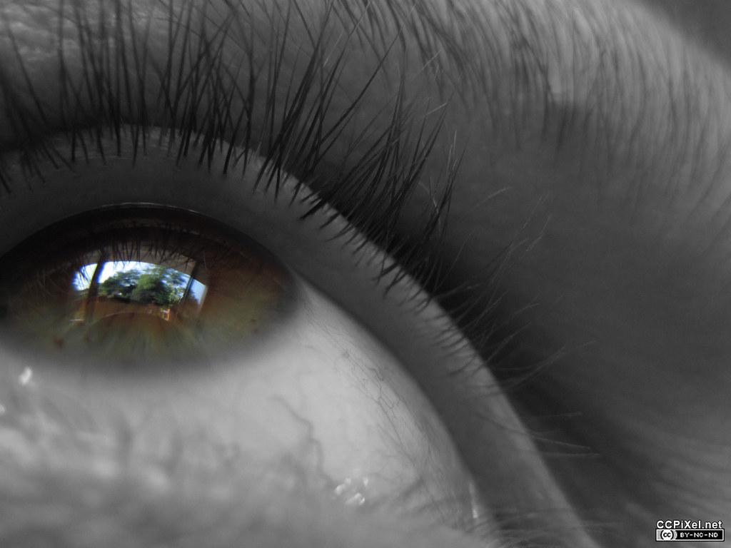 Eye Reflection Photoshop Eye reflection 2 | Ano...