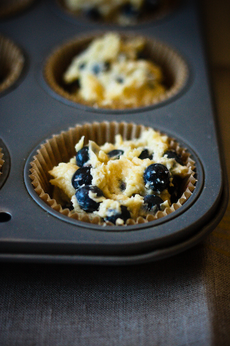 Blueberry cornmeal muffins in tin 2 (1 of 1) | by bell.ab