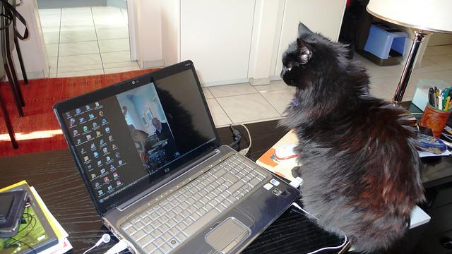 Nera and computer