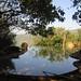 day 7: Chorla Ghats/Wildernest Nature Resort